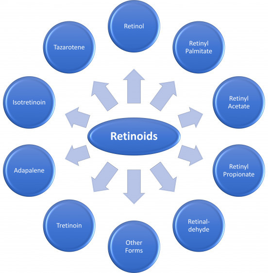 different-forms-of-retinoids-preformed-vitamin-a