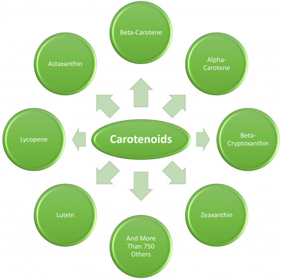 different-types-of-carotenoids