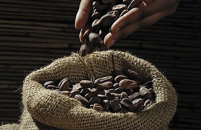 Cocoa Is A Truly Beneficial Thing